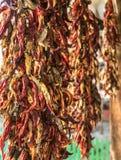 Koord die Rood Chili Peppers Hanging On drogen een Boerderij stock foto's