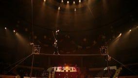 Koorddansers bij het circus stock videobeelden
