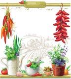 Koorden van peper en Stilleven vector illustratie