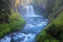 Koosah秋天,亦称中间秋天,其次是McKenzie河,俄勒冈,美国的三主要瀑布 免版税库存图片