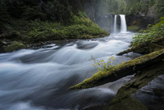 Koosah faller vattenfallet - den Willamette nationalskogen - Oregon royaltyfri fotografi