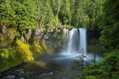 Koosah Falls in Mc kenzie pass, Oregon. royalty free stock photos