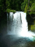Koosah Falls, Oregon. Koosah Falls on the MacKenzie River in Oregon Royalty Free Stock Image