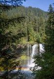 Koosah Falls royalty free stock images