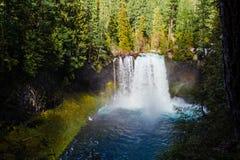 Koosah nedgångar på den McKenzie floden i Oregon Arkivbild