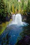 Koosah nedgångar på den McKenzie floden i Oregon Fotografering för Bildbyråer