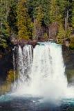 Koosah nedgångar på den McKenzie floden i Oregon Arkivbilder