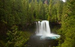 Koosah nedgångar på den McKenzie floden, Oregon, USA royaltyfri fotografi