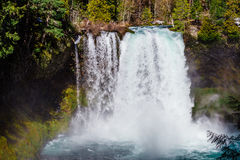 Koosah Spada na McKenzie rzece w Oregon Zdjęcia Stock