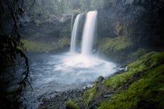 Koosah tombe cascade - réserve forestière de Willamette - l'Orégon Photographie stock