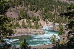 Kootenai rzeka Obraz Stock