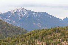 Kootenay山上面 免版税库存照片