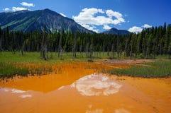kootenay национальные баки парка краски стоковое изображение rf