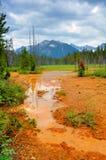 kootenay Canada park narodowy Obraz Stock