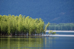 Kootenay Lake, British Columbia. Water, trees and mountains comprise this lovely scenic taken at Kootnay Lake near Creston, British Columbia, Canada stock images