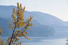 Kootenay Lake, British Columbia, Canada Stock Photo