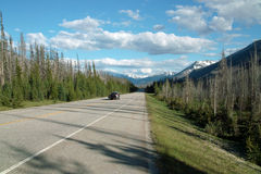 Kootenay National Park, Alberta, Canada. Stock Photography