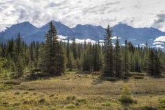 Kootenay National Park, British Columbia, Canada Royalty Free Stock Photos
