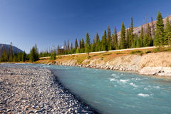 Kootenay National Park, Canada Royalty Free Stock Image