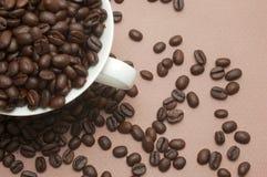Kop die met koffiebonen wordt gevuld Stock Foto's