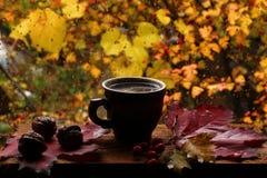 Kop hete koffie en dalingen op het venster Royalty-vrije Stock Afbeeldingen