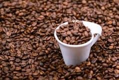 Kop met koffiebonen die wordt gevuld Stock Afbeelding