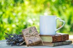 Kop thee, boeken en gift Romantische achtergrond met kop thee en giftdoos Kop thee in de tuin Royalty-vrije Stock Fotografie