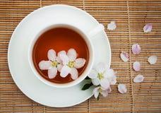 Kop thee en de lentebloesem Royalty-vrije Stock Foto's
