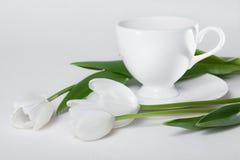 Kop thee en de Witte Bloemen van de Tulp Stock Afbeelding