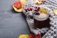 Kop thee en grijze plaid Royalty-vrije Stock Afbeelding