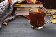 Kop thee en grijze plaid Stock Fotografie