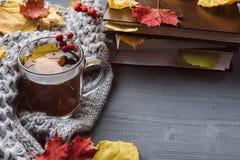 Kop thee en grijze plaid Stock Afbeeldingen