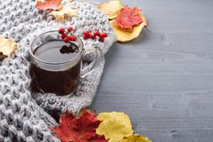 Kop thee en grijze plaid Royalty-vrije Stock Afbeeldingen