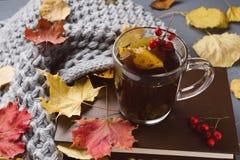 Kop thee en grijze plaid Royalty-vrije Stock Foto