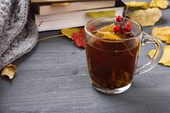 Kop thee en grijze plaid Stock Foto