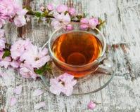 Kop thee en sakurabloesem Royalty-vrije Stock Afbeeldingen