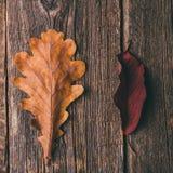Kop thee met de herfstbladeren op houten achtergrond stock foto