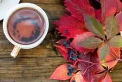Kop thee met de herfstbladeren van wilde druiven Royalty-vrije Stock Foto's
