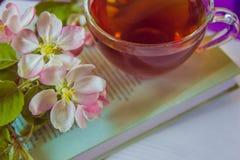 Kop thee op boek met de bloesemtakken van de appelboom stock afbeelding