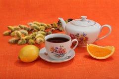 Kop thee, theepot, citroen, oranje plak en pussy-wilg Royalty-vrije Stock Afbeeldingen