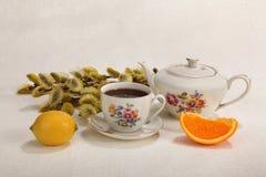 Kop thee, theepot, citroen, oranje plak en pussy-wilg Royalty-vrije Stock Foto