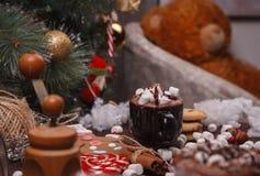 Kop van cacao Royalty-vrije Stock Foto's