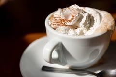 Kop van Cappuccino met Verse Slagroom en Kaneel op Bovenkant Stock Afbeeldingen
