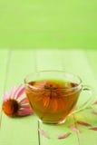 Kop van echinaceathee op groene houten lijst met exemplaarruimte voor uw tekst Royalty-vrije Stock Foto's