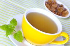 Kop van groene thee met kruiden en suikergoed Stock Afbeelding