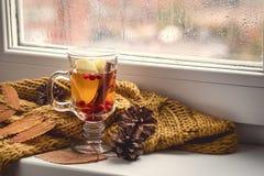 Kop van Hete AutumnTea met Apple-Bes en Kaneel dichtbij een Hete Drank van de Venster Gele Sjaal voor Autumn Cold Rainy Days Hygg royalty-vrije stock afbeelding