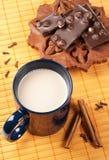 Kop van hete cacao stock foto