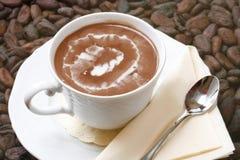Kop van hete chocolade Royalty-vrije Stock Afbeeldingen