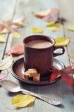 Kop van hete chocolade Stock Foto's