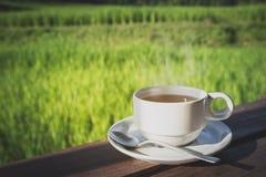 Kop van hete thee in aard stock afbeeldingen